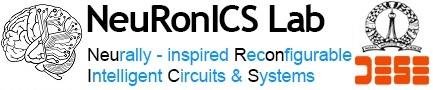 NeuRonICS Lab
